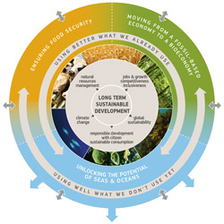bioeconomy_graphic_small